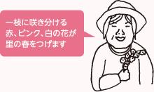 sp_sec03_ph03